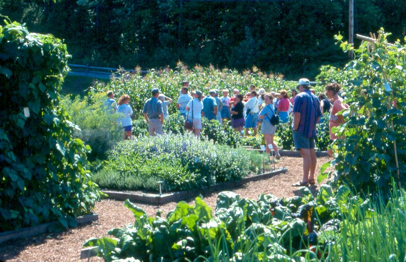 Organic Trial Gardens - Intervale
