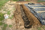 Asparagus Planting Trench With Compost and Crowns